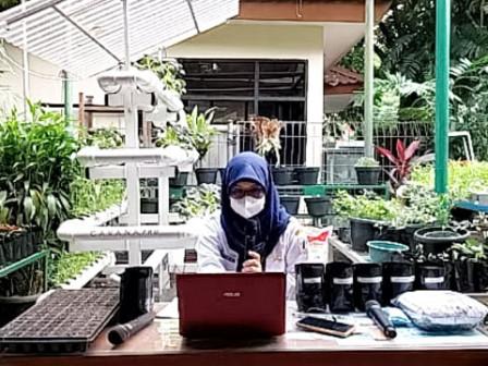 Sudin KPKP Jakpus Gelar Webinar Kelas Berkebun Tanaman Sayuran Buah