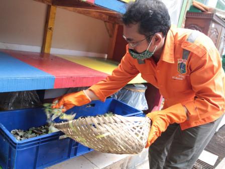 Kelurahan Guntur Manfaatkan Eco Enzyme dan Larva Maggot