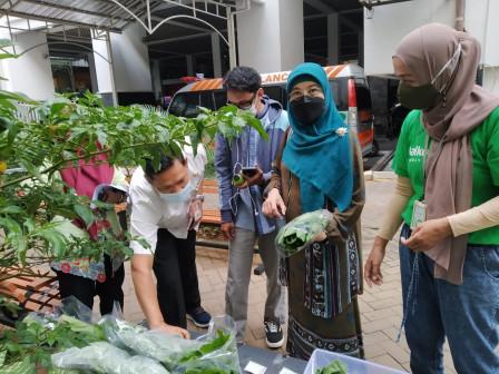 Bazar Sayur dan Produk Olahan di Balkot Farm Diminati