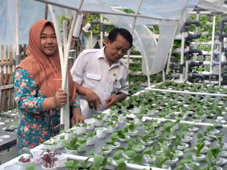 COVID-19, Women Farmers Group is Empowered for Food Security