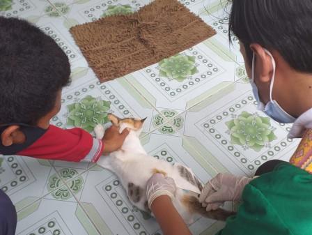 Vaksinasi Gratis Digelar Sudin KPKP Kepulauan Seribu di Pulau Harapan