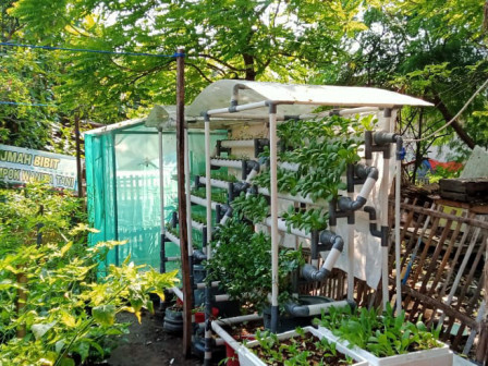 Urban Farming Becomes Popular in Thousand Islands