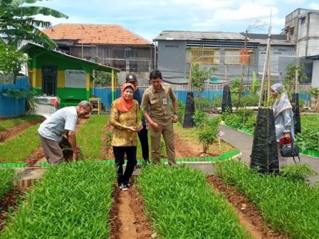 Lembaga Pendidikan Pelajari Pertanian Perkotaan di Kembangan