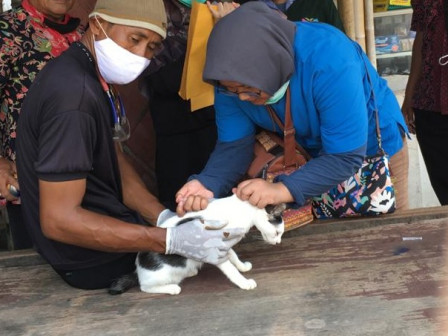Thousand Islands Continues to Intensify Rabies Vaccination