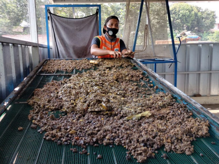 Kurangi Sampah, Satpel LH Kecamatan Pesanggrahan Budidaya Maggot