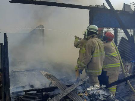 10 Mobil Pemadam Atasi Kebakaran di Pinang Ranti