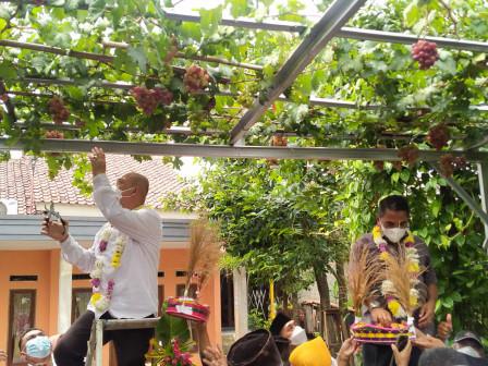 Wilayah RW 06 Munjul Diproyeksikan Jadi Agrowisata Anggur