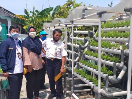 Enam KWT di Kepulauan Seribu Ikuti Lomba Urban Farming