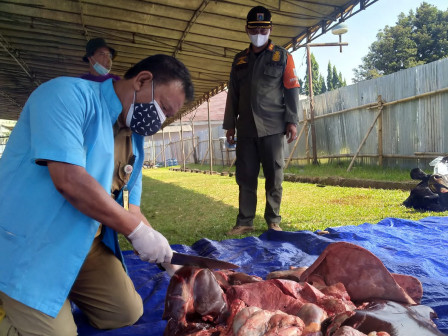 Petugas KPKP Jaktim Periksa 24 Sapi Kurban di Masjid At Tien