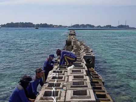 Petugas Lakukan Perawatan Breakwater Roboh Sepanjang 100 Meter di Pulau Panggang