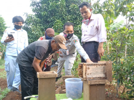 Commission A Member Strongly Supports Trigona Honey Bee Cultivation