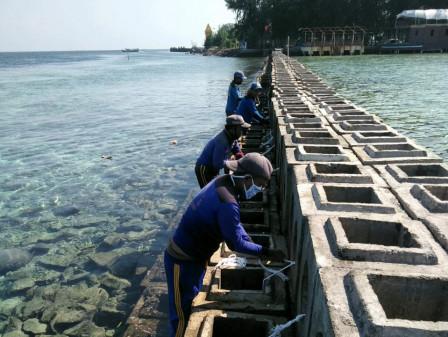 Breakwater Rusak di Pulau Pramuka Diperbaiki Petugas