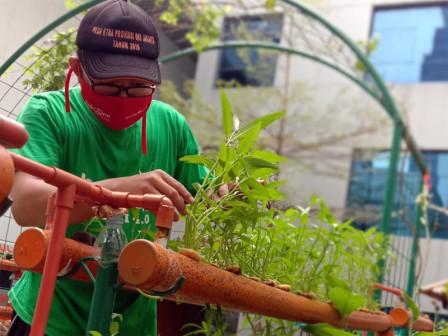 Urban Farming Group Members Return to Maintaining Balkot Farm