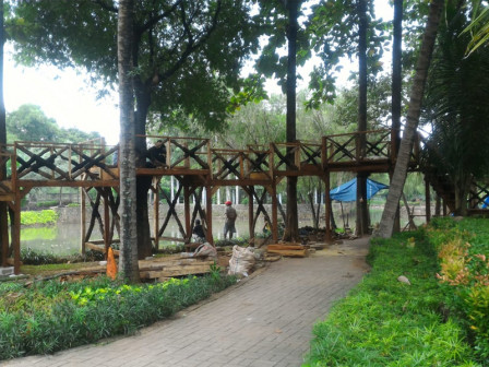 Taman Dadap Merah Kebagusan Dibangun Rumah pohon