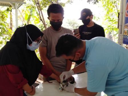 149 Hewan Peliharaan Warga Divaksin Rabies di RW 04 Bambu Apus
