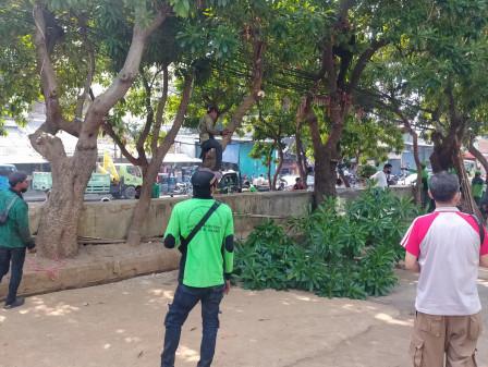 15 Pohon Rindang di Jl KH Moh Masnyur Dipangkas