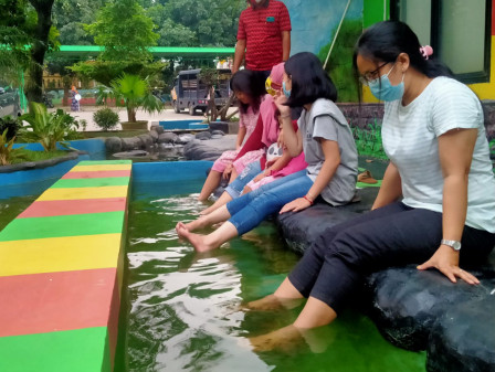 Asyiknya Terapi Ikan di Kantor Kelurahan Ciracas