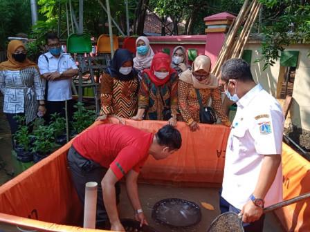 20 Kg Ikan Lele Dipanen di RPTRA Sunter Jaya Berseri