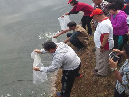 50 Thousands of Tilapia Seeds Spread at Melati Reservoir