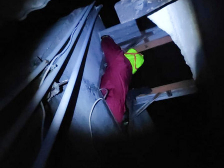 Sarang Tawon Vespa di Atap Rumah Warga Pulau Tidung Berhasil Dievakuasi