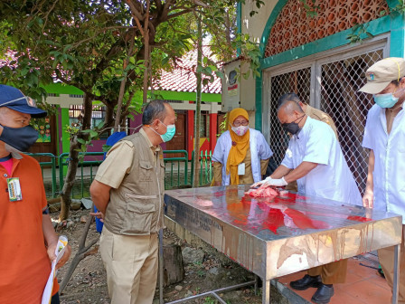 Sudin KPKP Jakut Periksa Kesehatan Daging 2.564 Hewan Kurban