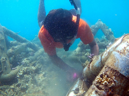 Untung Jawa Offers Snorkeling Spot to See Clownfish