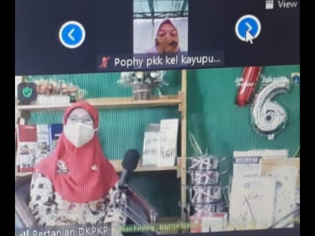 DKPKP DKI Jakarta Gelar Webinar Pengembangan Inovasi Diversitifikasi Produk Olahan Hasil Pertanian B