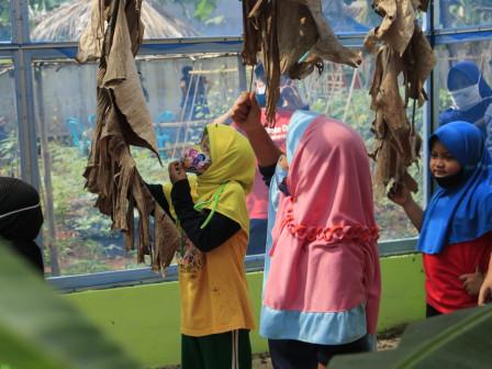 Dinas LH DKI Buka Padepokan Restu Bumi Ciracas untuk Wisata Edukasi