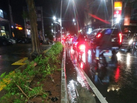 Update! 30 RTs and 25 Streets in Jakarta Flooded