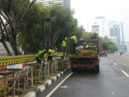 In Central Jakarta, 7,238 Trees Pruned in January-December 2020