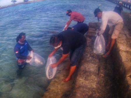 KPKP's PBKL Restocks 21,090 Fish Fingerlings to Thousand Islands Waters