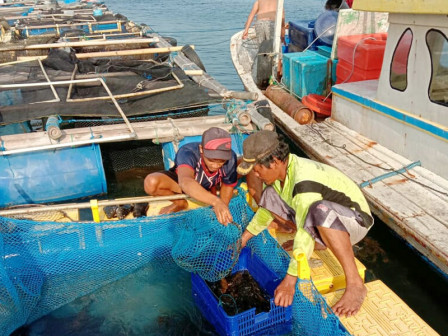Fish Farming Training Given to Fish Farmer Groups in Thousand Islands