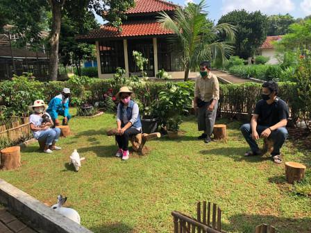 Taman Kelinci Bambu Apus, Wisata Edukasi Bagi Keluarga