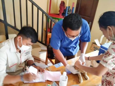 65 HPR Divaksin Rabies di Jaktim