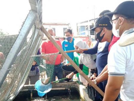 Warga Panen Ikan Nila di Kolam Gizi di Kolong Flyover Cipinang Lontar