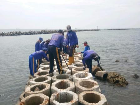 Perawatan Tanggul Sepadan Pantai Sisi Utara Pulau Untung Jawa Rampung