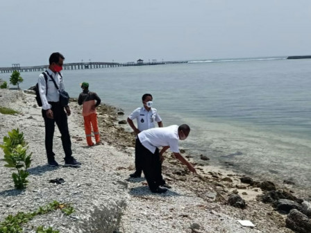Hundreds of Kilograms of Crude Oil Waste in Thousand Islands Cleaned