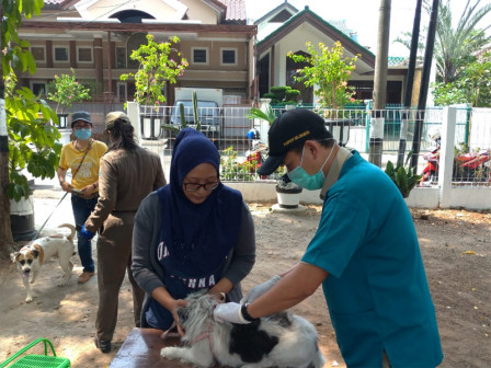 January-Early December, 6,736 Animals in South Jakarta Vaccinated