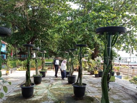 Sudin KPKP Kepulauan Seribu Manfaatkan Lahan Terbatas Untuk Urban Farming