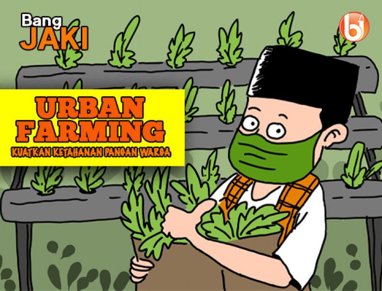 Urban Farming Kuatkan Ketahanan Pangan Warga