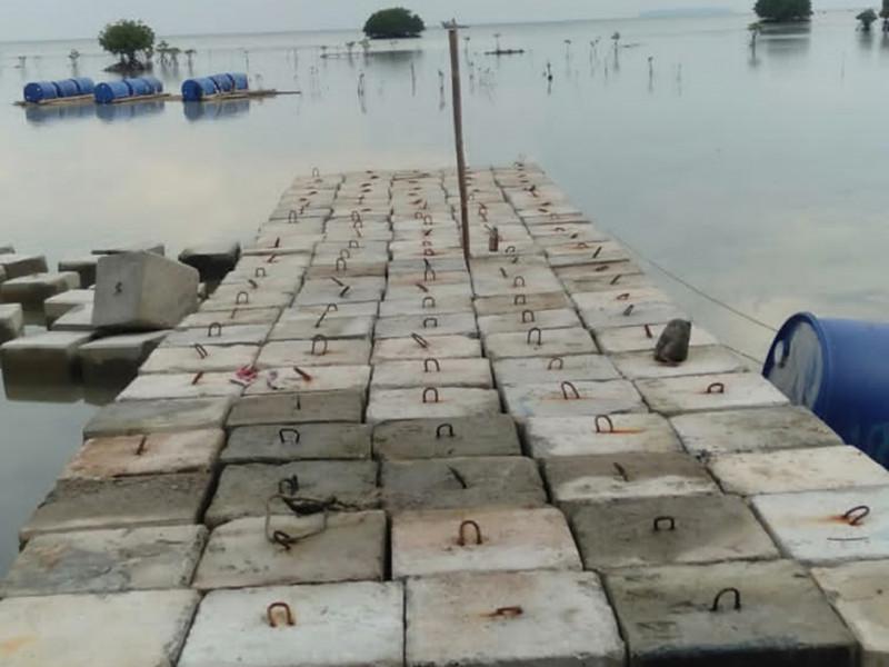 Pembuatan Tanggul Groin Pantai Bintang Pulau Pari