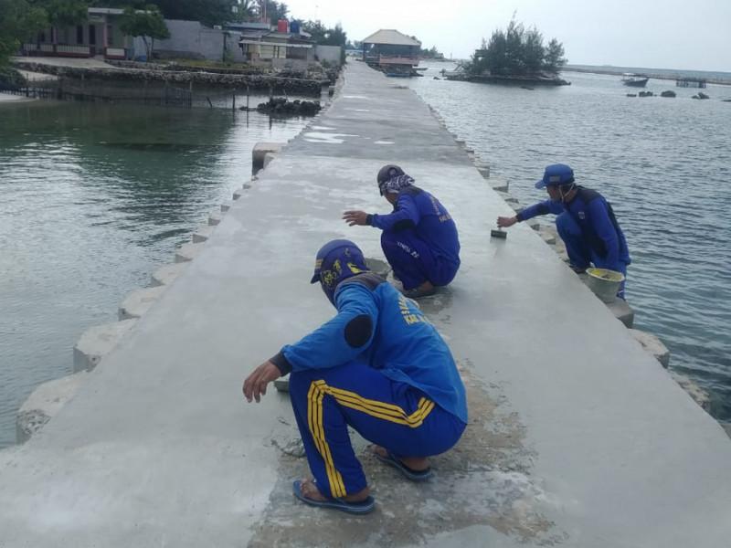 Pengacian Tanggul di Pulau Tidung