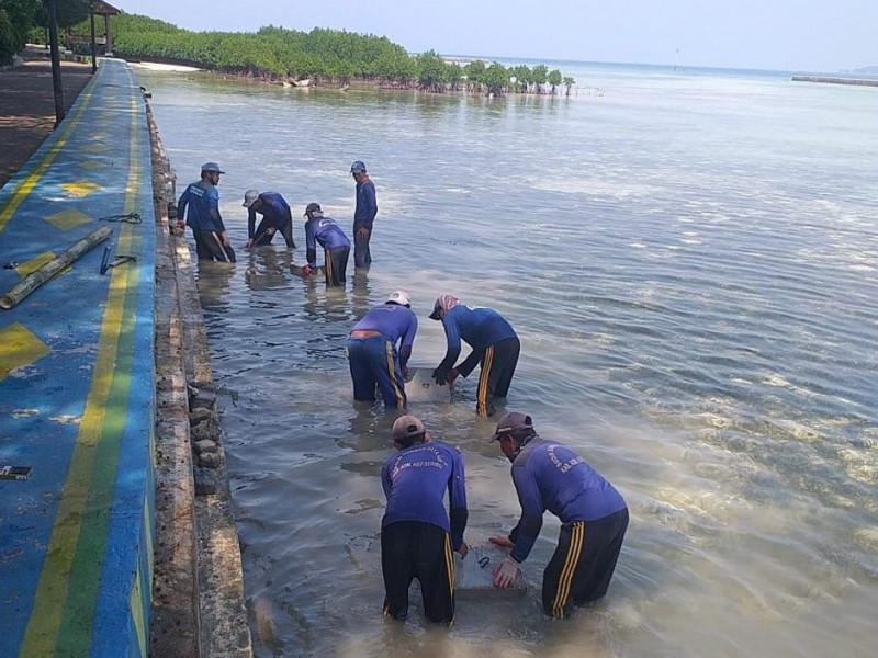 Pemasangan Tanggul di Pulau Pramuka Kelurahan Panggang