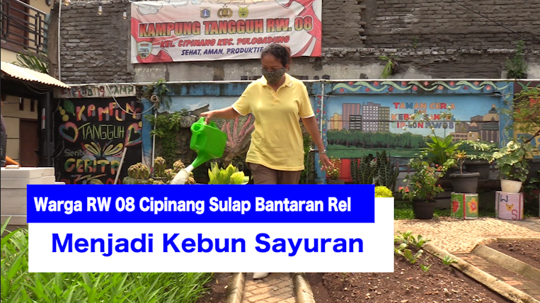 Warga RW 08 Cipinang Sulap Bantaran Rel Menjadi Kebun Sayuran