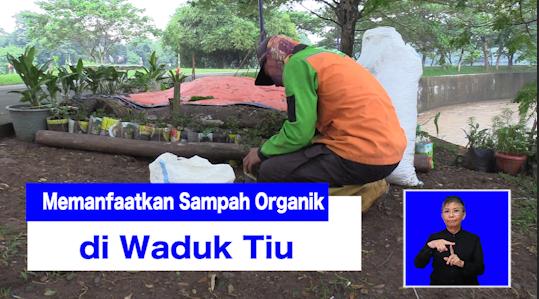 Memanfaatkan Sampah Organik di Waduk Tiu